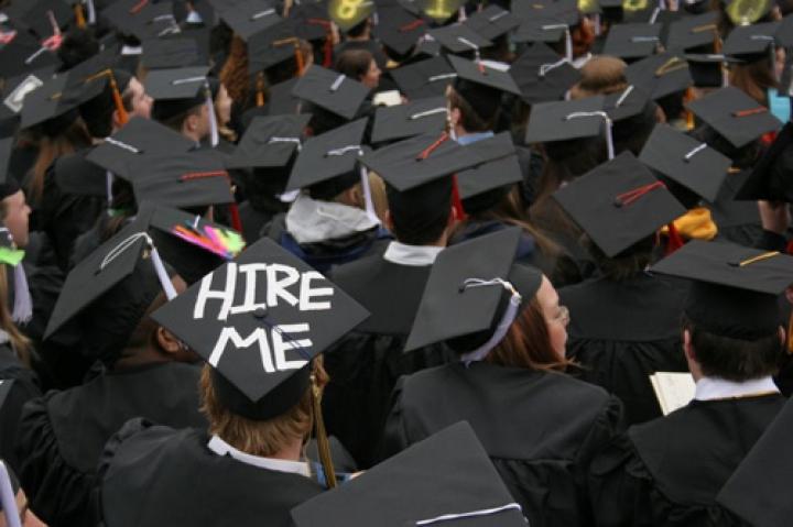 7 Lowongan Kerja untuk Fresh Graduate dari Semua Jurusan