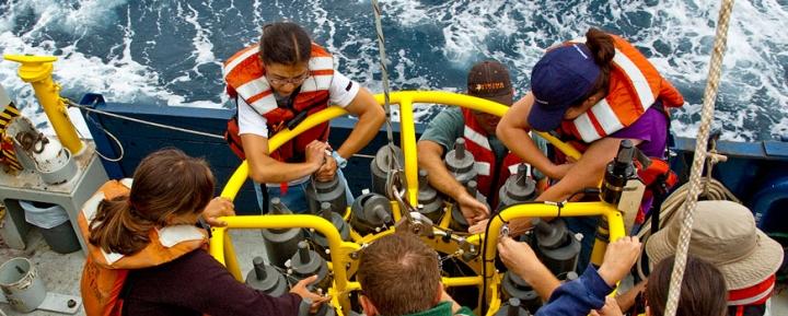"""Serba-Serbi Jurusan Oseanografi—Untuk Kamu yang Ingin """"Kenalan"""" Lebih Jauh dengan Laut dan Seisinya"""