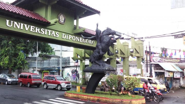 Universitas Diponegoro, Mulai dari Pilihan Program Studi Hingga Kuota pada SNMPTN 2019