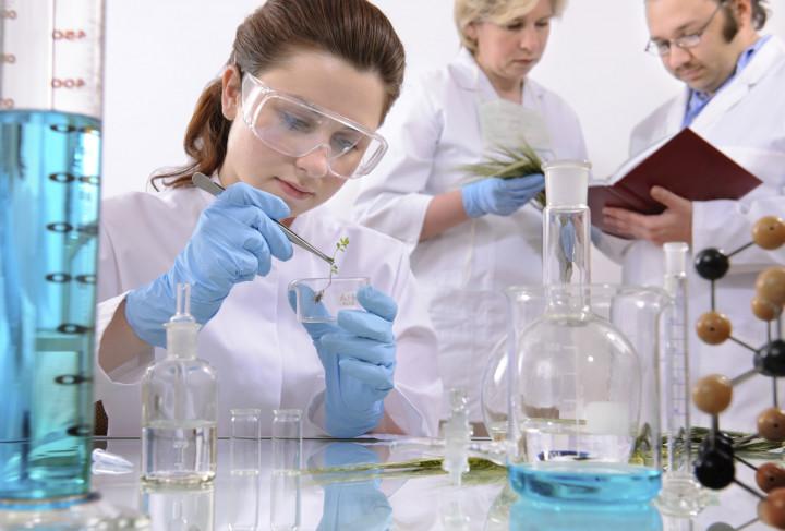 Ragam Pilihan Profesi untuk Lulusan Kimia Murni