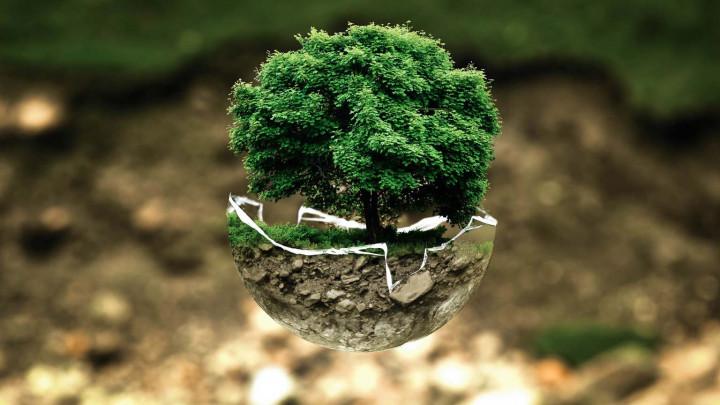 5 Gaya Hidup yang Ramah Lingkungan, Tetapi Tetap Kekinian
