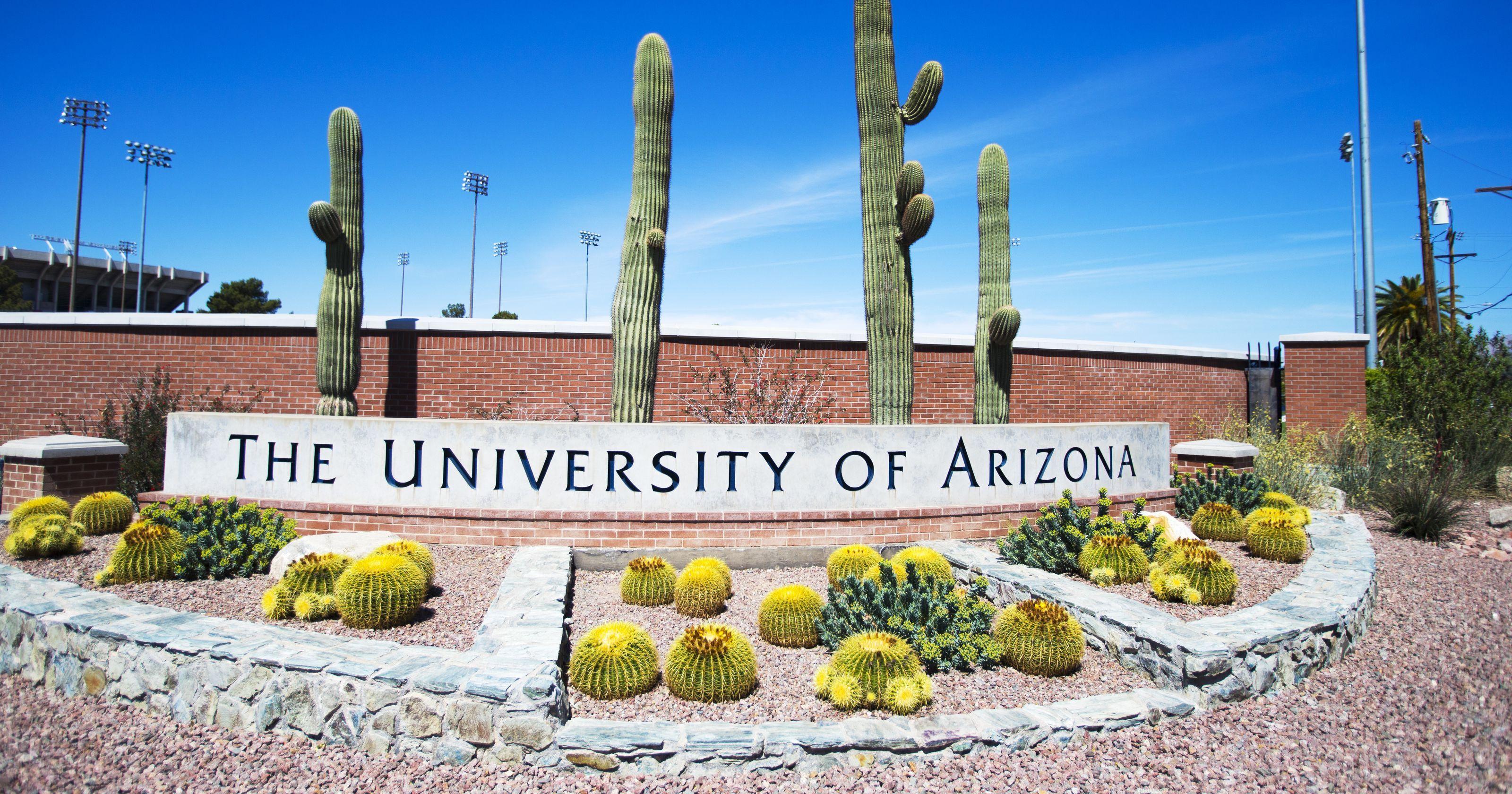 university of arizona - sampoerna university